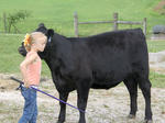Harrison County 4-H Fair Animal Shows