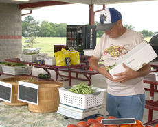 """<div class=""""source"""">Kayla Pickrell</div><div class=""""image-desc"""">Al Solomon weighs beans for a customer to purchase at the Harrison County Farmers' Market on Friday.</div><div class=""""buy-pic""""><a href=""""http://web2.lcni5.com/cgi-bin/c2newbuyphoto.cgi?pub=081&orig=solomoneight7.24.14.jpg"""" target=""""_new"""">Buy this photo</a></div>"""