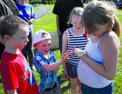 Alexis, Piper, Hunter and Tim played with a lizard at Flat Run Veterans Park on July 4. The lizard was among many reptiles brought to the park for children to play with.