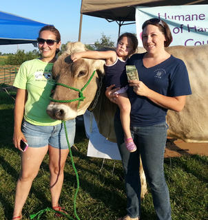 The winner of the Cow Pie Bingo at the Harrison County Fair on July 9 was Audrey Evans, center, with Mango the cow. Proceeds will benefit the Humane Society's spay/neuter program. Emcee was Doug Miller, line judge was Mike Laws, event coordinator was Heather Fryman, left, Kayleigh Evans, right. Paul Colson is the owner of the cow.