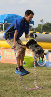 The Flying Houndz Frisbee Dog Show returned this year for everyone's entertainment.