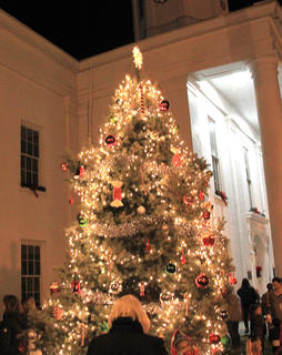 The Frankie Taylor Christmas Tree was decorated by his family and was lit last week to signify the beginning of the Christmas Season in downtown Cynthiana.