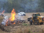 controlled burn on US 27 south