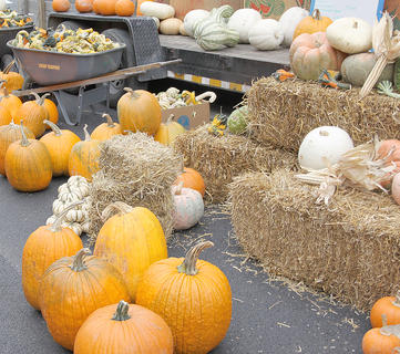 Pumpkins and gourds were available for sale.