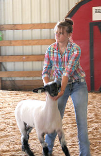 Young children and young adults alike participated in the Sheep Show on Monday night at the Fair. Attention to detail and proper form in handling their animals paid off for the winners.