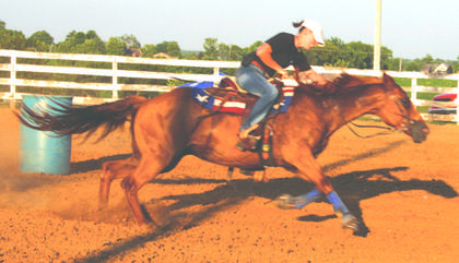 Rachelle Fryman competed in the Open Potato Race at the Harrison County Fair Fun Horse Show.
