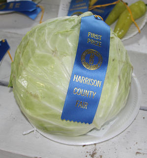 4-H, FFA and adult entries in the Harrison County Fair.